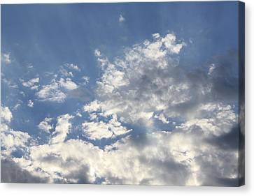 Heavenly Canvas Print