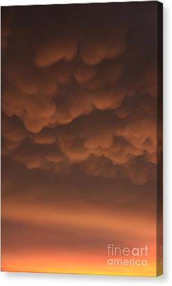 Heavy Canvas Print by Bret Worrell