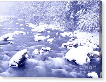 Heavy Snow Cranberry River Canvas Print by Thomas R Fletcher