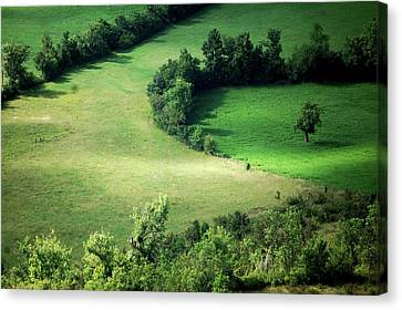 Hedged Farmland Canvas Print by Photo Marylise Doctrinal