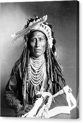 Heebe-tee-tse Of The Shoshone Nation Canvas Print by Everett