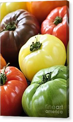 Heirlooms Canvas Print - Heirloom Tomatoes by Elena Elisseeva