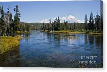 Henry Fork Of The Snake River Canvas Print by Robert Bales