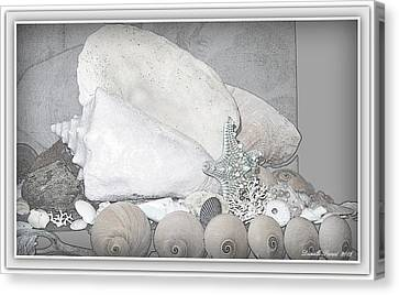 Beach Theme Decorating Canvas Print - Her Majesty  by Danielle  Parent