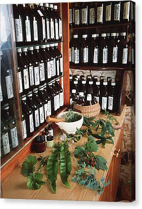 Herbal Pharmacy Canvas Print by Tek Image