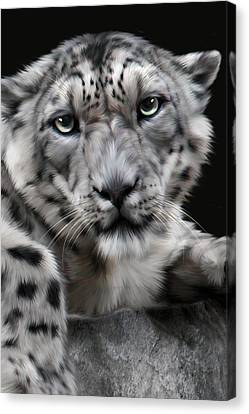 Hercules Canvas Print by Big Cat Rescue