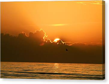 Here Comes The Sun Canvas Print by Jose Rodriguez