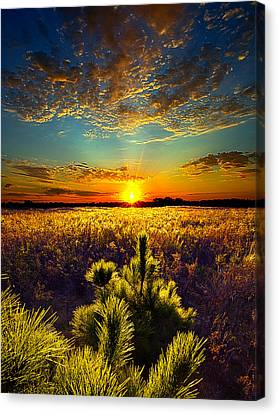 Autumn Leaf Canvas Print - Here With Me by Phil Koch