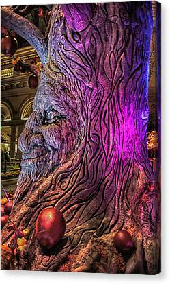 Heres Lookin At You Canvas Print by Stephen Campbell