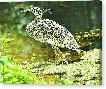 Heron Day Shot At The Pond   Canvas Print by Tommy  Urbans