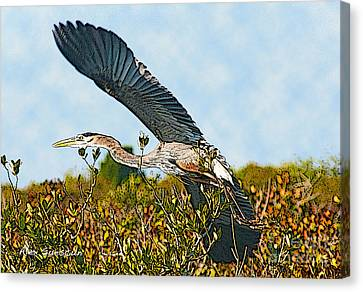 Heron Glide Canvas Print by Alex Suescun