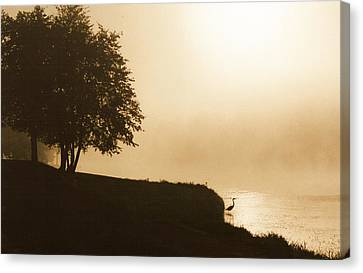 Canvas Print featuring the photograph Heron In The Mist by Peg Toliver
