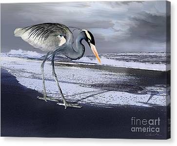 Heron Taking His Afternoon Beach Walk Canvas Print by Danuta Bennett