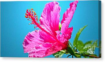 Hibiscus Crystal Luster Canvas Print by Gwyn Newcombe