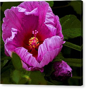 Canvas Print featuring the photograph Hibiscus II by Michael Friedman