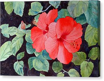 Canvas Print featuring the painting Hibiscus by Laurel Best