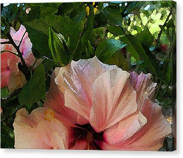 Hibiscus Seclusion Canvas Print by Katharine Birkett