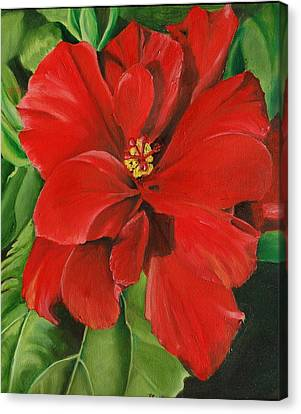 Hibiscus Canvas Print by Teresa Smith