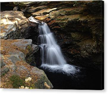 Canvas Print featuring the photograph Hidden Falls by Raymond Earley