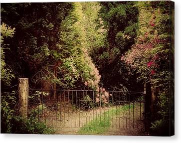 Canvas Print featuring the photograph Hidden Garden by Marilyn Wilson