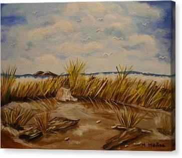 Hide Away Canvas Print by Maria Medina