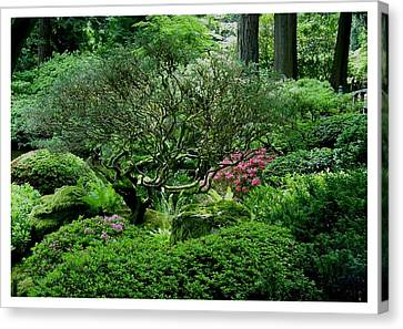 Canvas Print featuring the photograph Hiding In A Sea Of Green by Frank Wickham