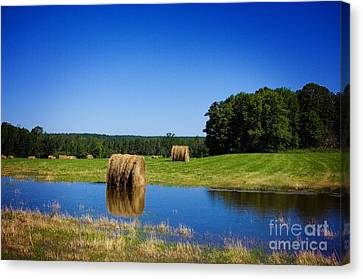 High And Dry On The North Forty Canvas Print by The Stone Age