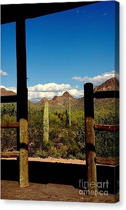 High Chaparral Old Tuscon Arizona  Canvas Print by Susanne Van Hulst