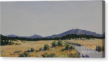High Land Road Canvas Print