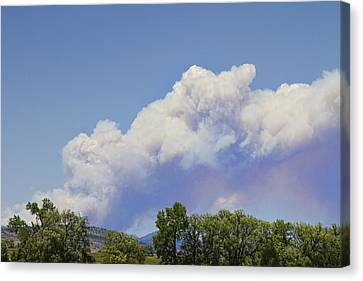 High Park Fire Canvas Print - High Park Fire Larimer County Colorado  by James BO  Insogna
