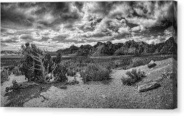 High Point Monochrome Canvas Print by Stephen Campbell