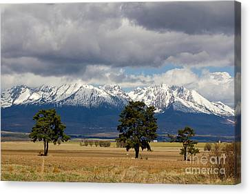Canvas Print featuring the photograph High Tatras - Vysoke Tatry by Les Palenik