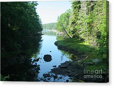 High Tide In Maine Part Of A Series Canvas Print by Ted Kinsman
