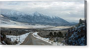 Highway 447 Canvas Print by Gary Rose