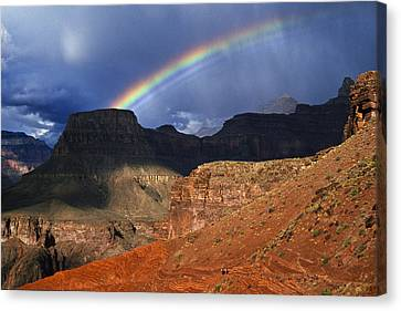 Hikers And Rainbow Kaibab Trail, Grand Canvas Print by Ralph Lee Hopkins