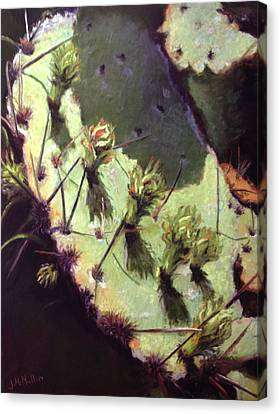 Hill Country Cactus Canvas Print by Jacquie McMullen