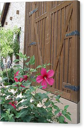 Canvas Print featuring the photograph Hill Country Hibiscus by Elizabeth Sullivan