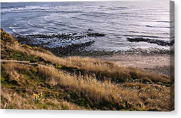 Hill Side View Canvas Print by Svetlana Sewell