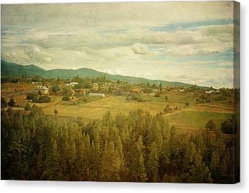 Hills And Valleys Canvas Print by Carolyn Dalessandro