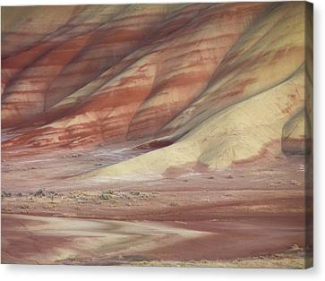 Clay Canvas Print - Hills Painted By Earth Minerals by Leland D Howard