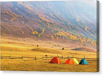 Hillside Camping In Hemu, Xinjiang China Canvas Print by Feng Wei Photography