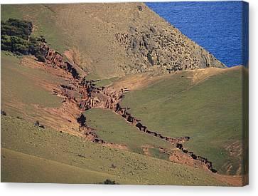 Hillside Erosion Caused By Run Canvas Print by Jason Edwards
