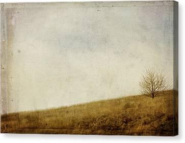 Hillside Canvas Print by Rebecca Cozart