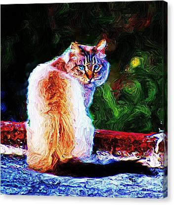 Canvas Print featuring the digital art Himalayan Cat by John  Kolenberg
