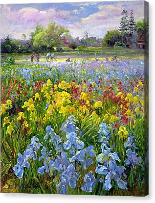 Hoeing Team And Iris Fields Canvas Print by Timothy Easton
