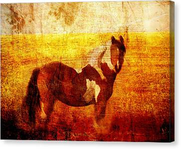 Home Series - Strength And Grace Canvas Print by Brett Pfister