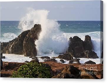 Hookipa Beach Wave 1 Canvas Print by Teresa Zieba