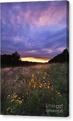 Hoosier Sunset - D007743 Canvas Print by Daniel Dempster