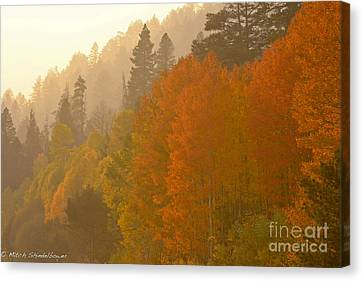 Canvas Print featuring the photograph Hope Valley by Mitch Shindelbower