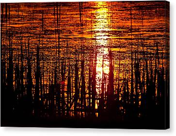 Horicon Marsh Sunset Wisconsin Canvas Print by Steve Gadomski